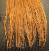髪のダメージ・枝毛の原因
